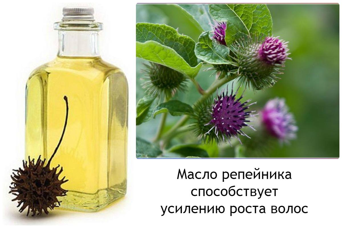 Как сделать из лопуха репейное масло