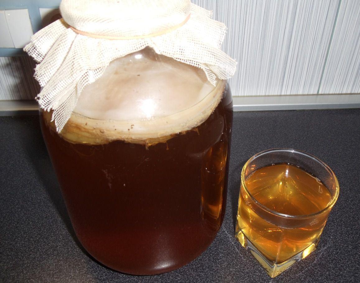 Вырастить чайный гриб пошагово