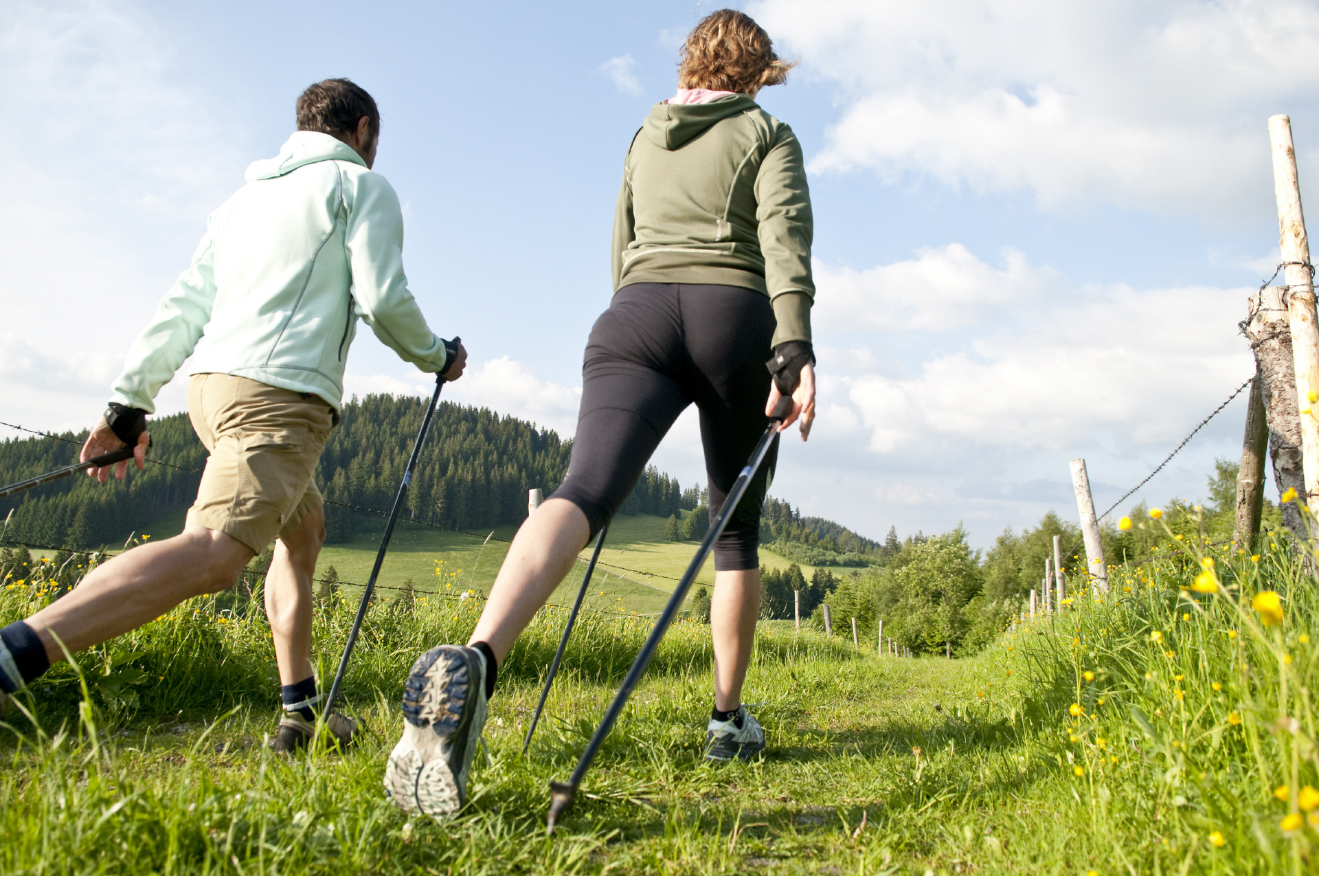 Скандинавская ходьба инструкция скачать