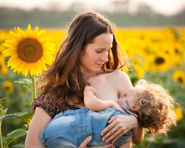 dojcenie-slnecnica1