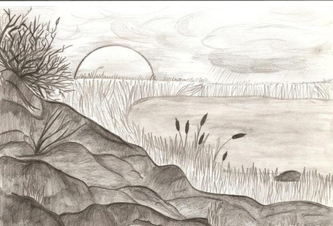 Рисунки карандашами для начинающих природа