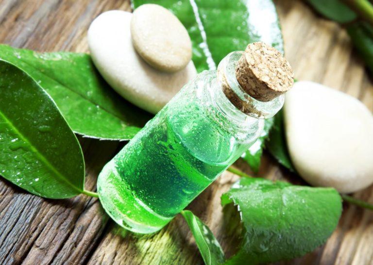 Свойства и применение масла чайного дерева. Лечение маслом чайного дерева в домашних условиях. Масло чайного дерева для ногтей,