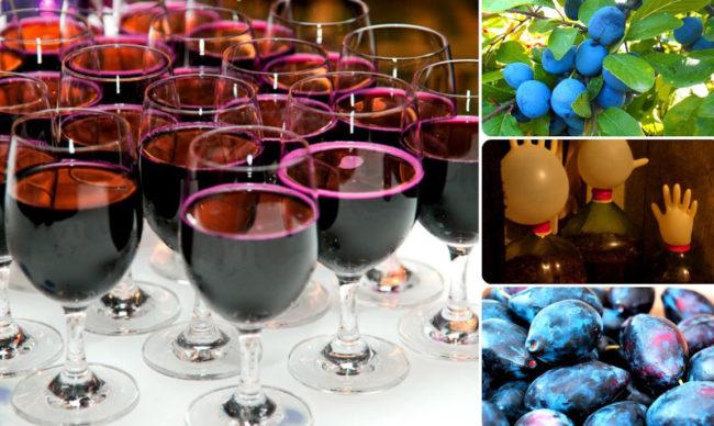 Вино из свежих слив в домашних условиях с пошаговым фото
