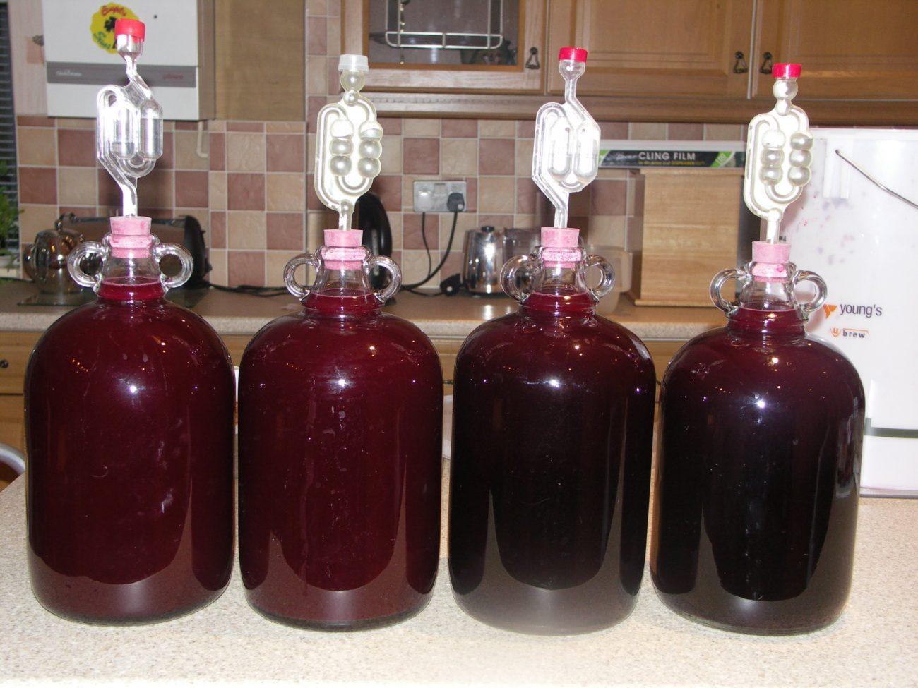 Сделать вино из слив своими руками