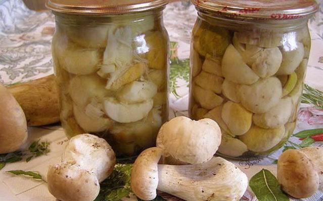 Маринование белых грибов в домашних условиях рецепты 266