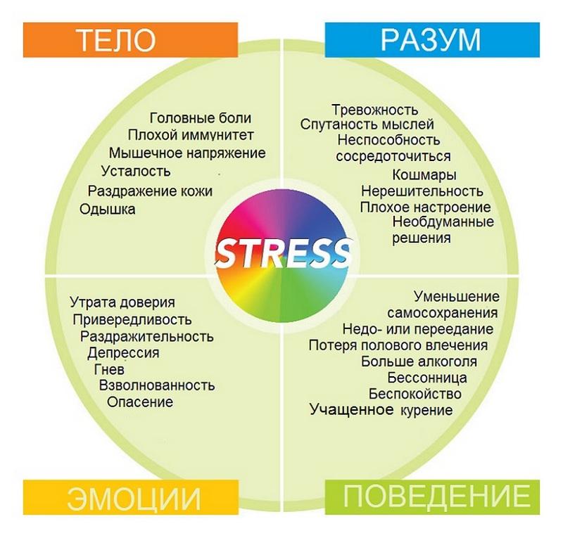восстановить нервную систему после стресса одном своих