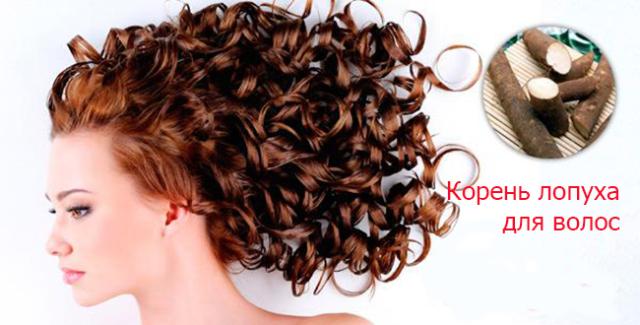 Корень лопуха для волос ополаскивание