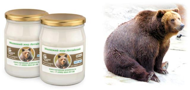 Медвежий жир нутряной как употреблять