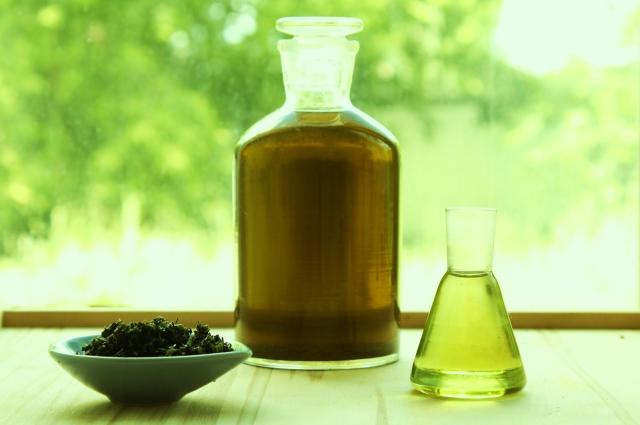 Масло чайного дерева для волос отзывы