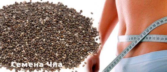 Картинки по запросу Семена chia – худеем с пользой