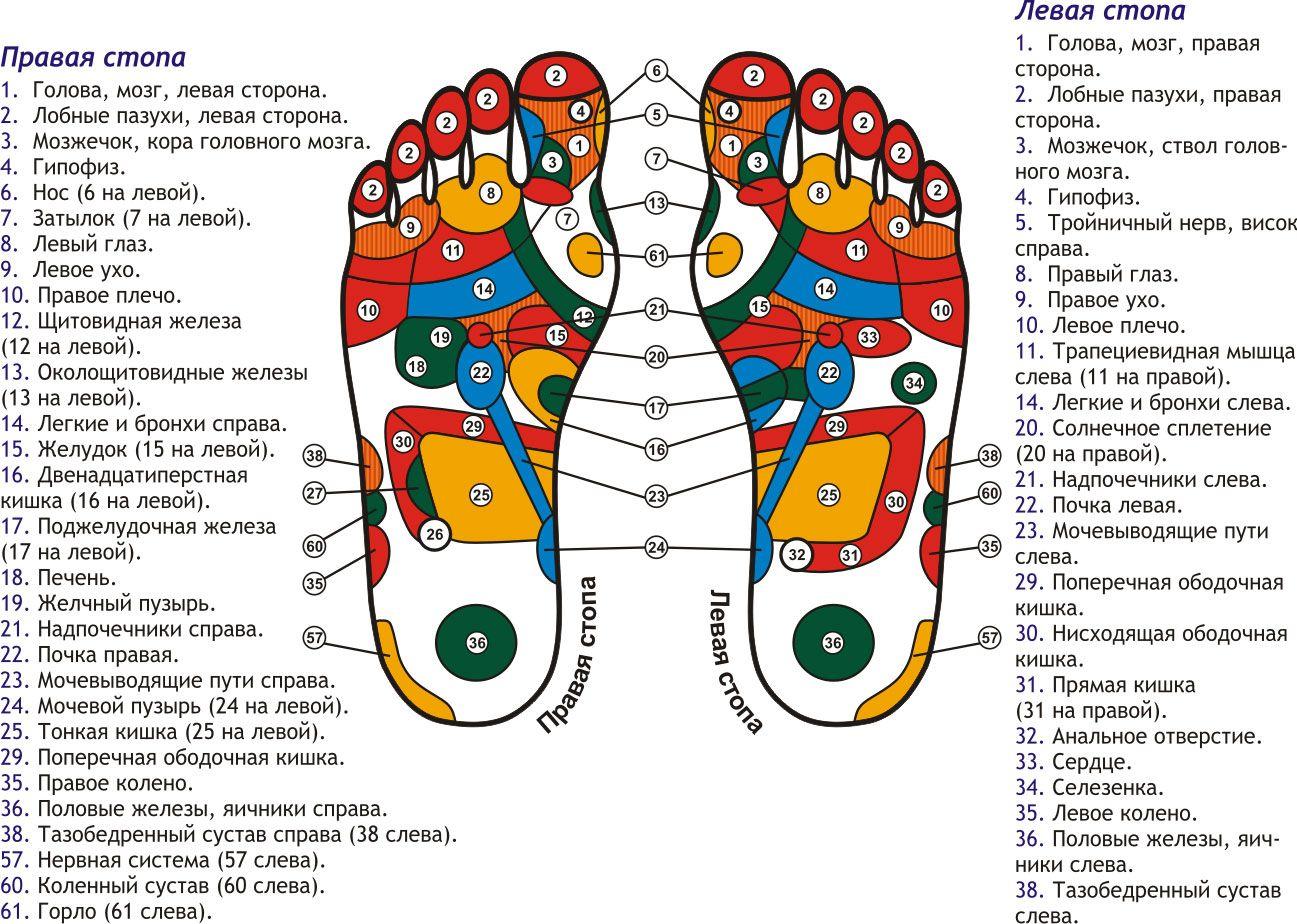 Схема массажа стоп ног фото 570