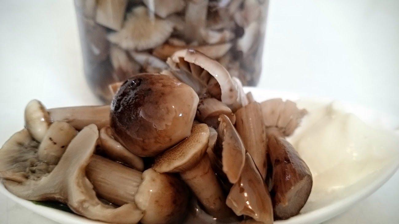 Картинки по запросу Маринуем грибы. Несколько простых рецептов