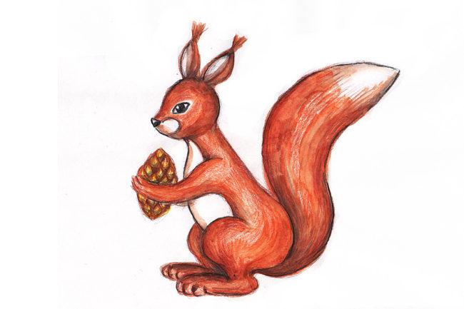 7_3-650x433 Как нарисовать белку поэтапно карандашом для детей и начинающих? Как нарисовать белку из сказки о царе Салтане и на дереве?