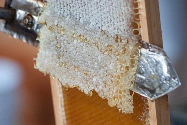 Пчелиный забрус полезные свойства лечение состав