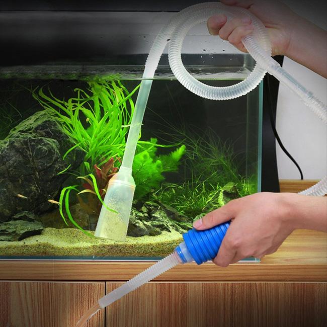 Рыбки которые чистят аквариум