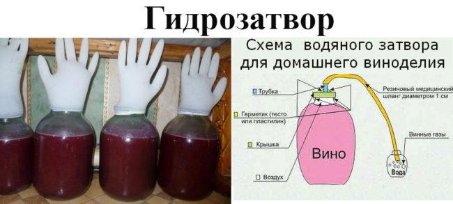 Как приготовить вино из тернослива